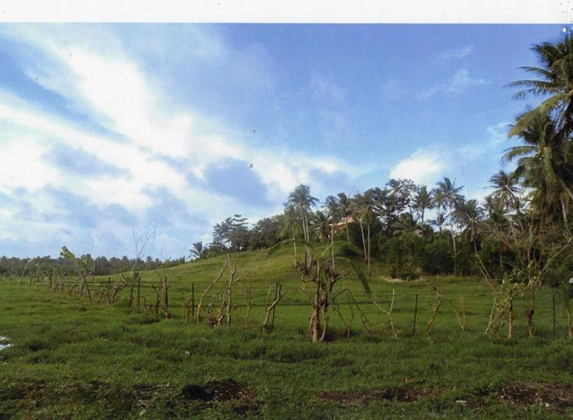 2,879 sqm Lot For Sale in Catangnan General Luna Siargao Island