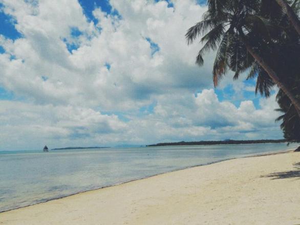 5,261 sqm Beach Front in Malinao GL Siargao