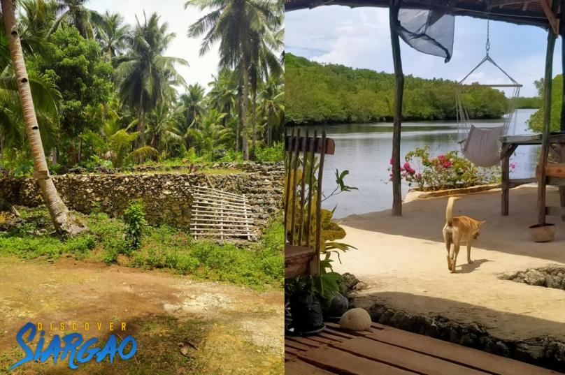 5,000 sqm Lot For Sale near the River in San Isidro Siargao