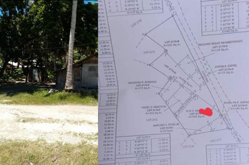 200 sqm Lot For Sale along the road in Malinao General Luna Siargao