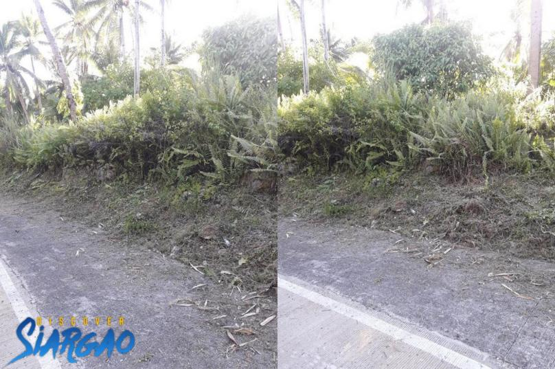 400 sqm Road side Lot For Sale in Pacifico, San Isidro Siargao Island
