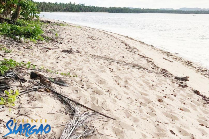 893 sqm White Sand Beach Front For Sale in Sta. General Luna Siargao