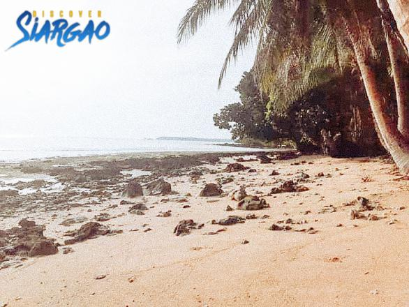 1.2 hectare Beach Front For Sale Libertad GL Siargao