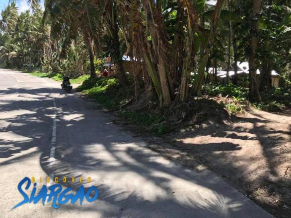 335 sqm Lot For Sale Across the Beach in Siargao Island