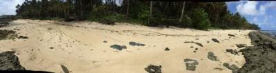524 sqm Beach Front For Sale near  Burgos Siargao