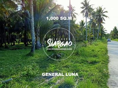 1,000 sqm Vacant Lot For Sale in General Luna
