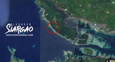 1.7 Hectare or 17,005 sqm Beach Front Lot For Sale in Cambas-ac Dapa Siargao