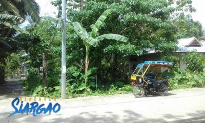 500 sqm Along the Road Property For Sale in Dapa Siargao Island