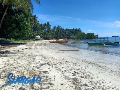 2,900 sqm Beach Front For Sale General Luna Siargao Island.