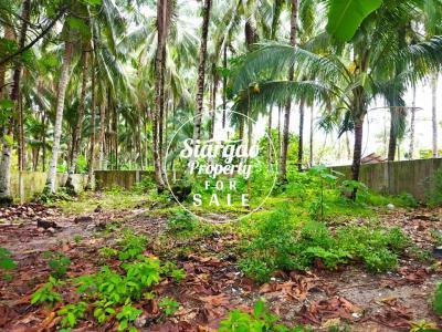 727 sqm Lot For Sale along the Road in Purok 5 General Luna Siargao Island