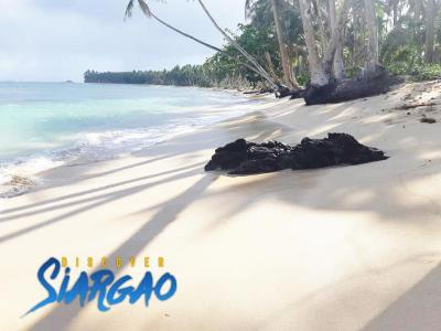 2,448 sqm Beach Front Property in Sta. Fe GL Siargao For Sale