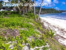 1,183 sqm White Sand Beach Front For Sale In Pacifico