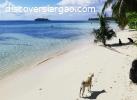 3,172 sqm Beach Resort Villas For Sale in General Luna