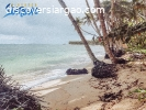 3,000 sqm Beach Front Property For Sale in Sta. Fe ,Siargao